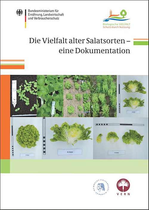 110721_Salatsorten