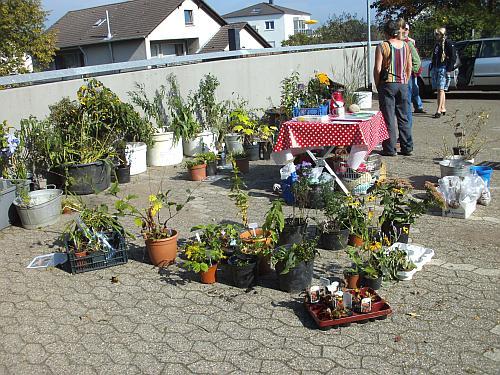 Bergische Gartenarche